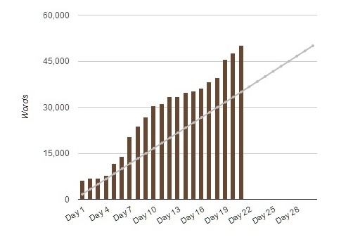 NaNo Graph